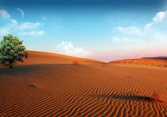 10 самых интересных мест Южной Африки, которые стоит посетить